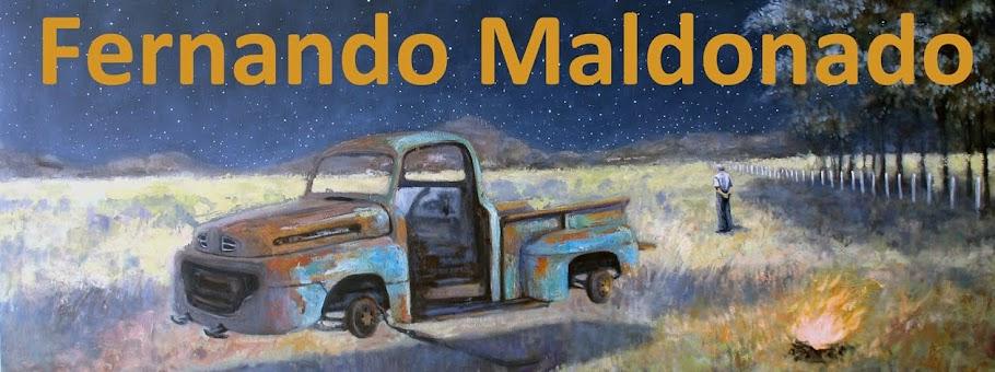 Fernando Maldonado (Artista)