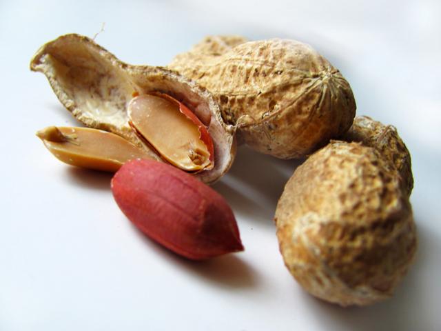 A Anvisa recomenda 15 gramas de amendoim por dia em uma dieta de 2000 calorias