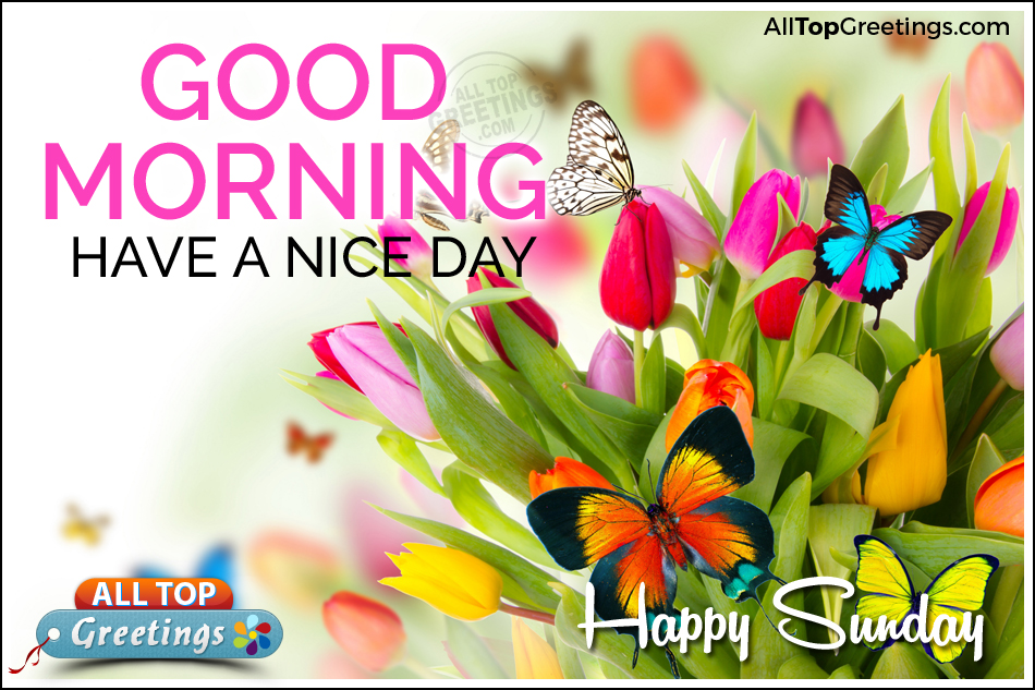 Good Morning And Happy Sunday Sms : Sunday special good morning quotes with nice wallpapers