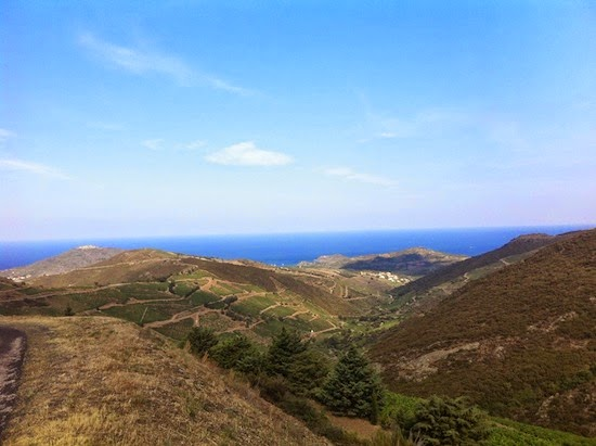 The view from partway up the Madeloc, Collioure, Languedoc-Rousillon