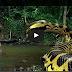 Anaconda 4 - Watch Full Movie