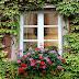Thiết kế cửa sổ và những lưu ý cần phải tránh