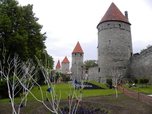 Tallinn Lillefestival