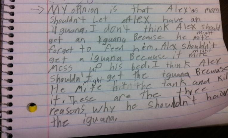 i wanna iguana persuasive writing lesson