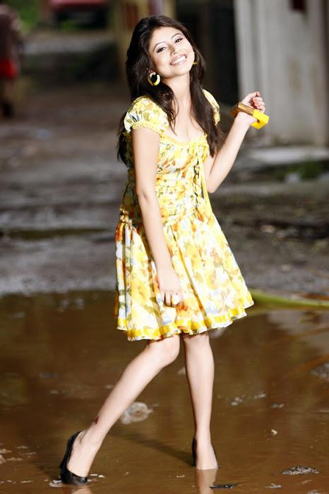 swati sharma glamour  images
