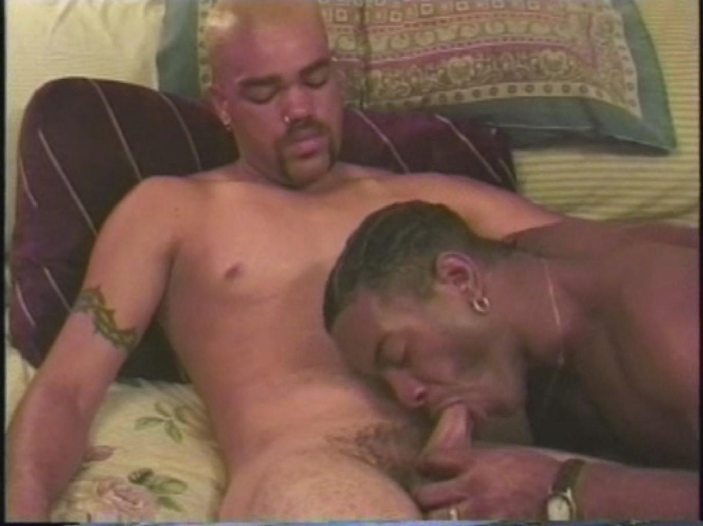 free male gay wrestling