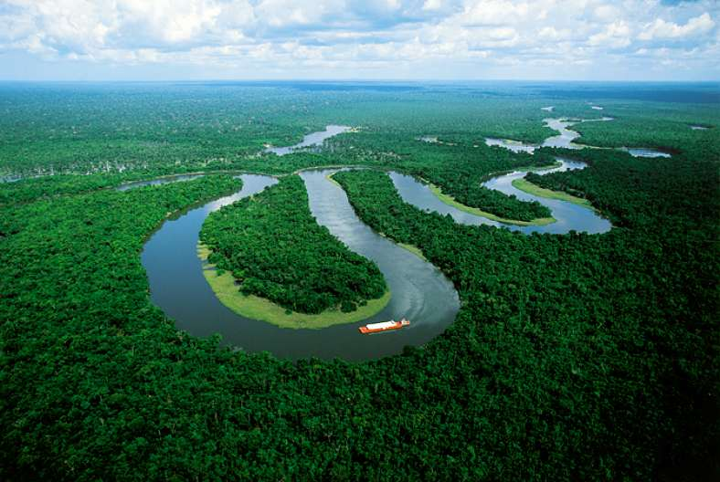 Todos somos amazónicos | Peces Voladores