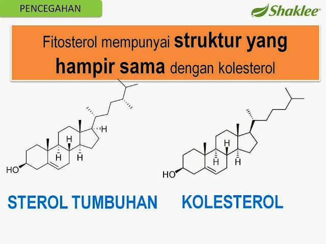 pencegahan sakit jantung dengan pengambilan phytocol-ST