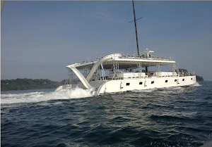 Ocean King Catamaran Tours