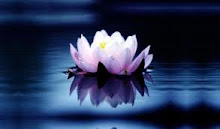 Poetry Site: Click Lotus