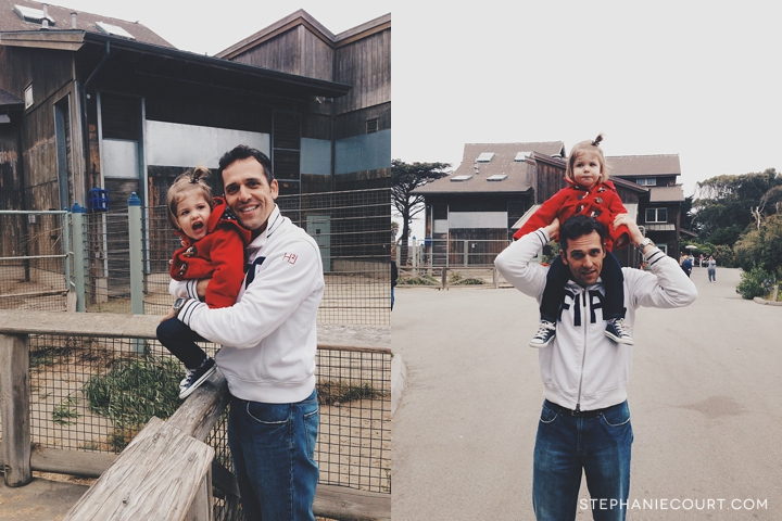"""family time at san francisco zoo"""