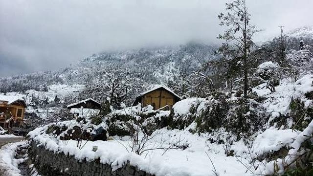 Album hình ảnh đẹp: Vẻ đẹp cổ tích ngày Sapa phủ tuyết