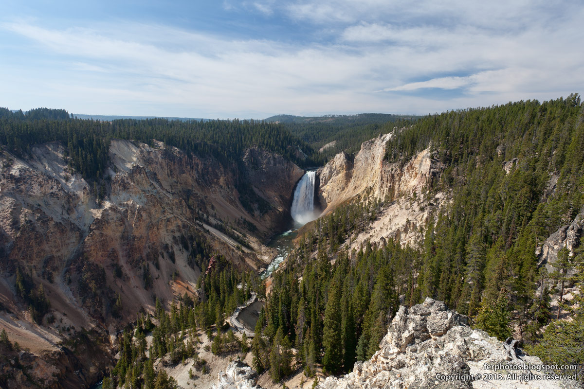 Grand Canyon of Yellowstone waterfall river mountain forest viewpoint