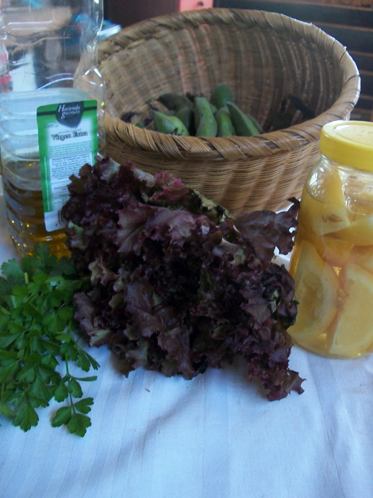 Backtoeden ensalada de habas verdes for Como se cocinan las habas