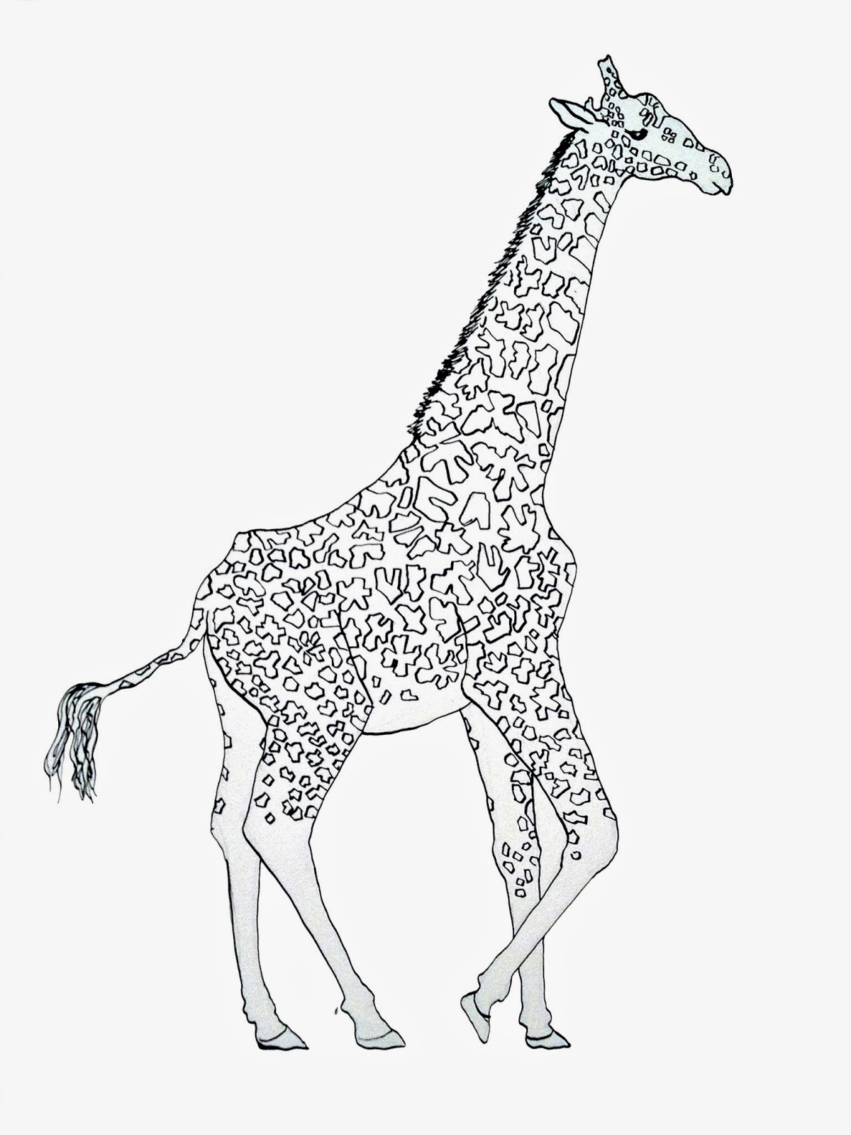 Line Art Giraffe : Pulling prints drawing a day giraffe line