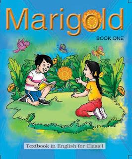 Marigold class 1