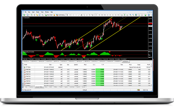 Professional forex trader leverage