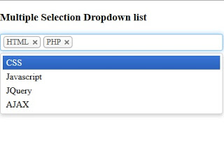 Mulitiple Selection Dropdown List