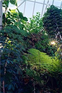 Peapod Life Indoor Ecosystem