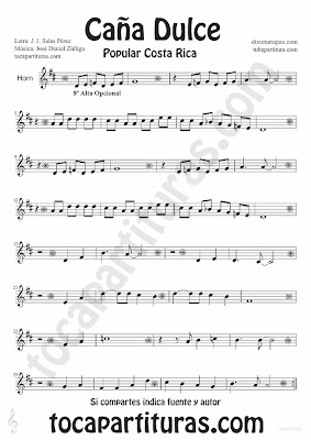 Tubescore Sweet Cane by JJ Salas Perez and Jose Daniel Zuñiga for Horn Puerto Rico popular song Music Score