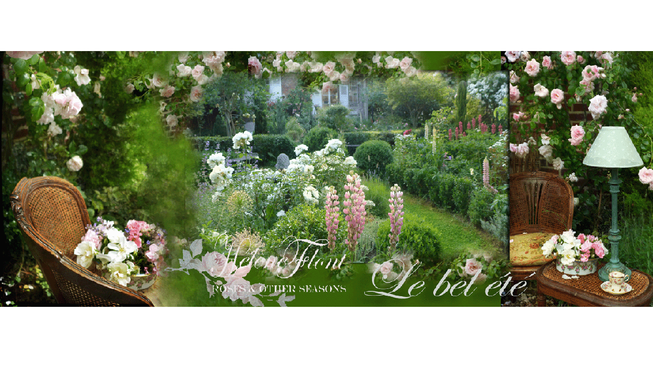 Roses & other seasons : The little french country cottage