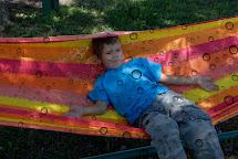 Resting On Hammock