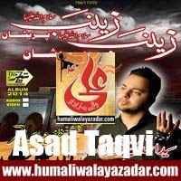 http://ishqehaider.blogspot.com/2013/11/asad-taqvi-nohay-2014.html