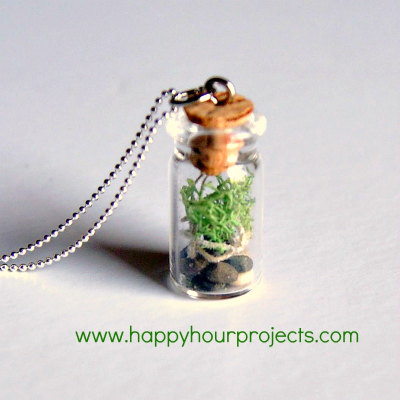 Tiny Terrariums For Earth Day Happy Hour Projects