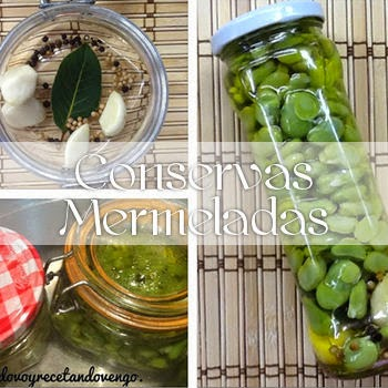 http://www.cocinandovoyrecetandovengo.com/p/conservas-mermeladas.html
