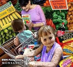 Monsanto dañino