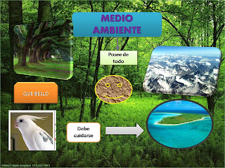 external image medio+ambiente.jpg