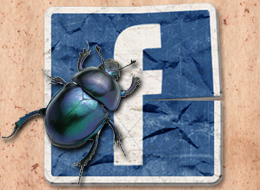 Facebook down, Facebook bug, Mashable