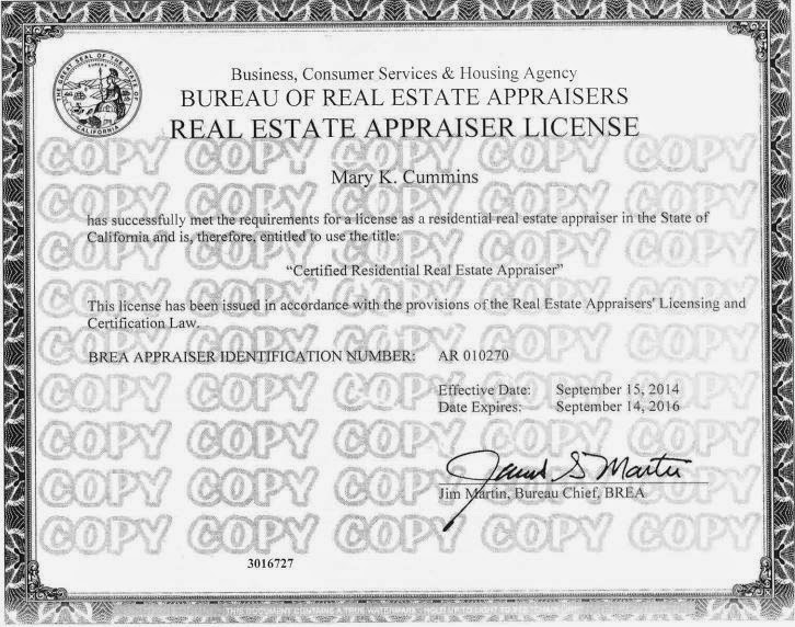 What are pros and cons working as real estate appraiser?