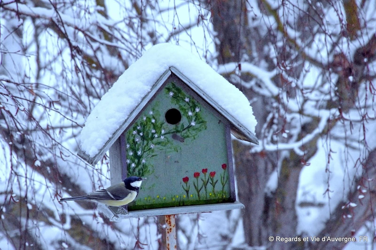 regards et vie d 39 auvergne le blog aidez les oiseaux passer l 39 hiver. Black Bedroom Furniture Sets. Home Design Ideas