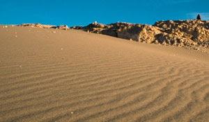 yo soy de opinion que hay que habilitar el desierto