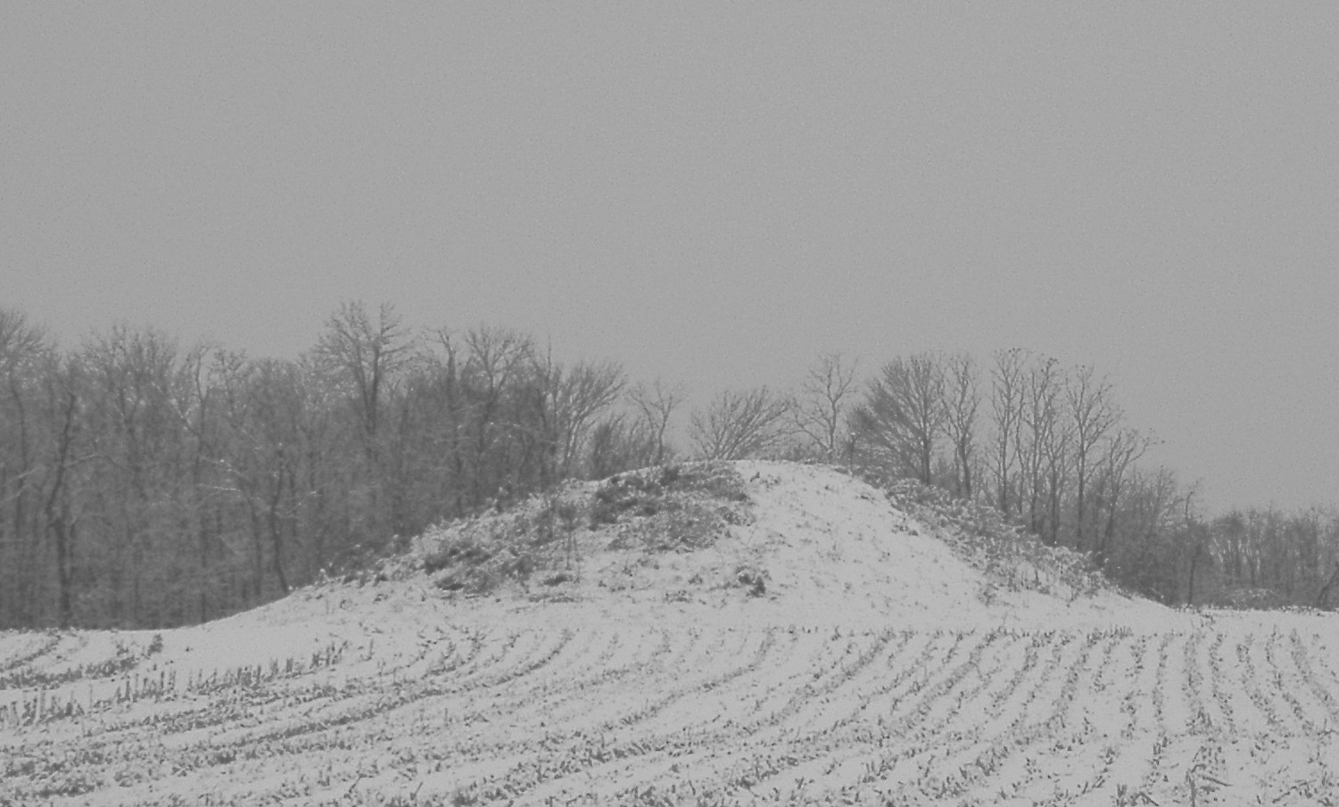mound builders Shelter first americans • cone-shaped houses • dome-shaped houses • rectangular-shaped houses • wigwam houses mound builders • they lived during 900- 1300 ce.