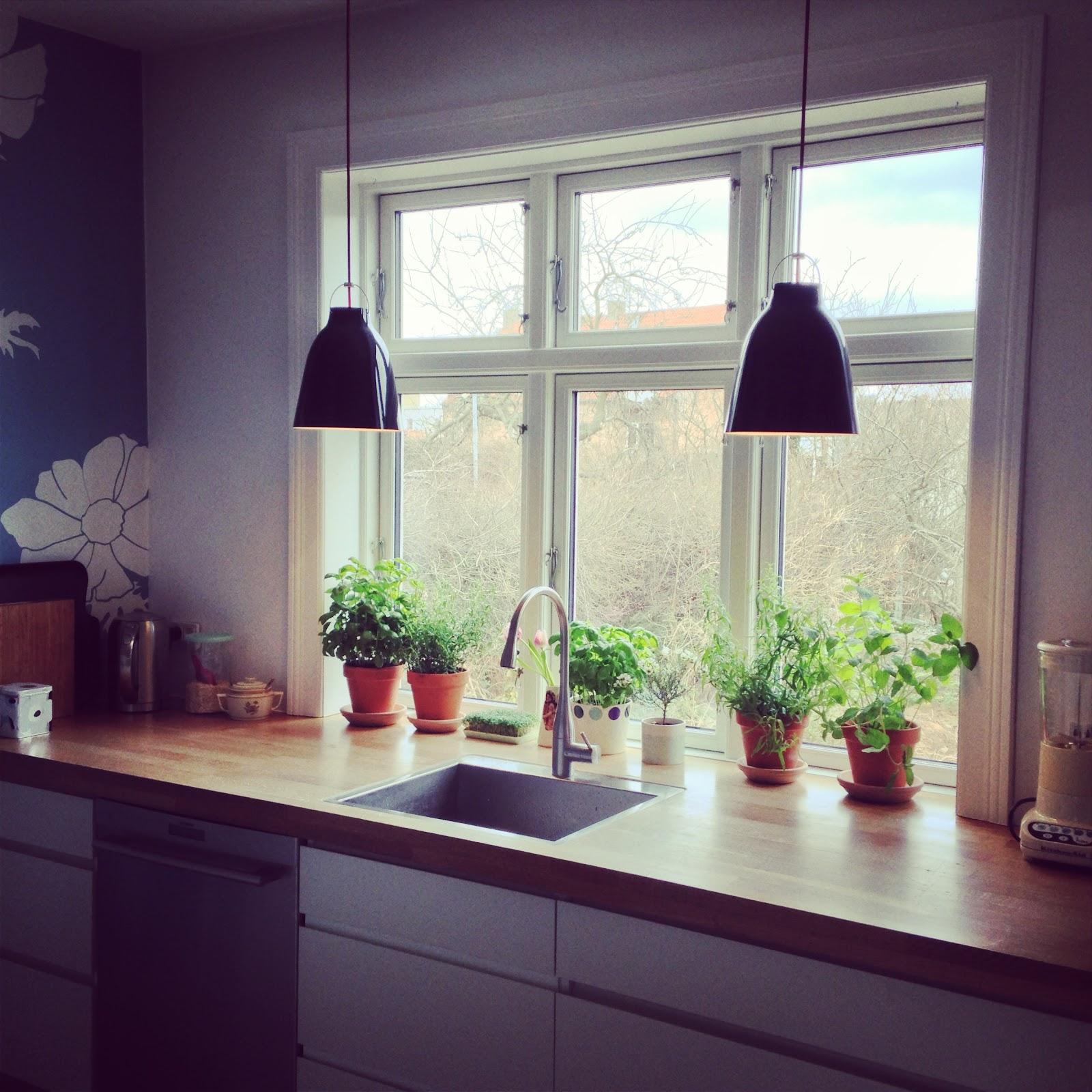 Bettyp elsker hjemmehygge: krydderurte have i køkkenvinduet