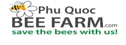 Phu Quoc Bee Farm: Save the bees with us!