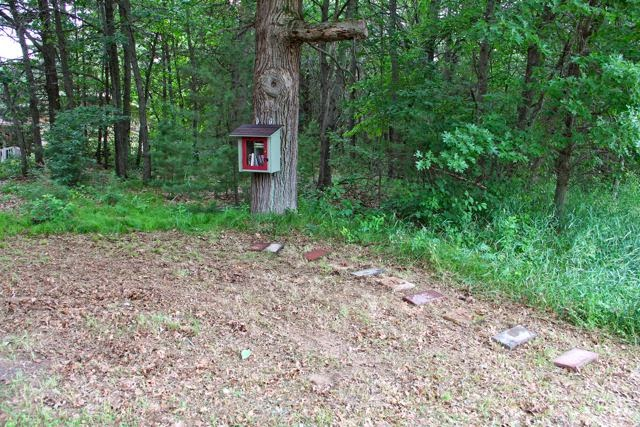 A mowed front yard for the Little Free Library in the Woods