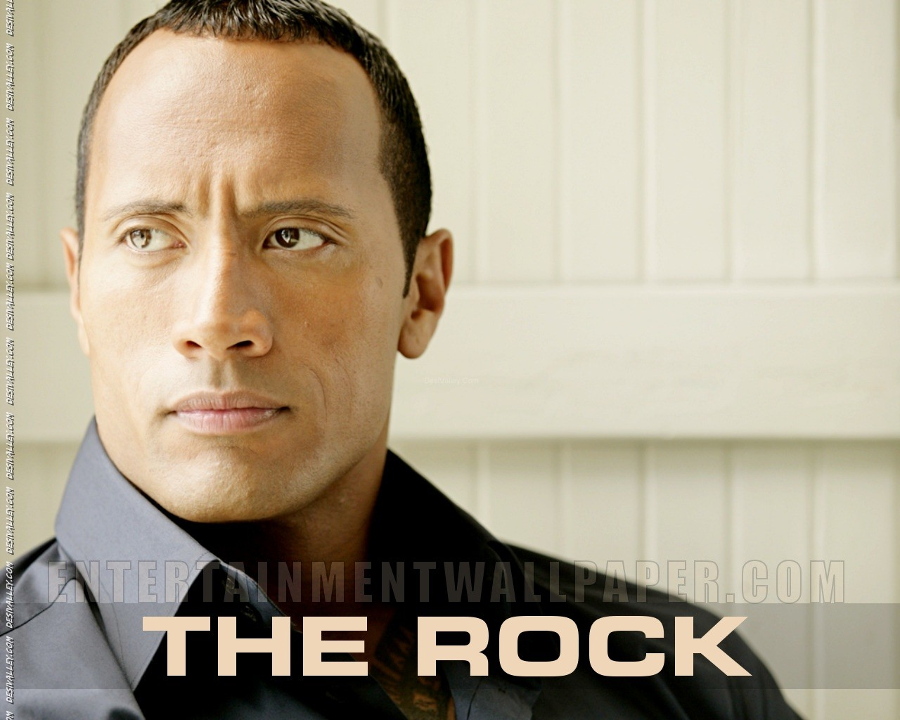 Wwe The Rock Quotes. QuotesGram