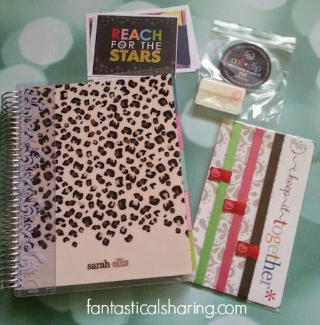 Fantastical Friday: Sharing my new #ErinCondren life planner #eclifeplanner14