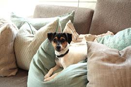 sofakroken vår