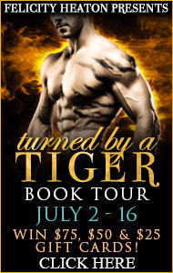 Turned By A Tiger Blog Tour