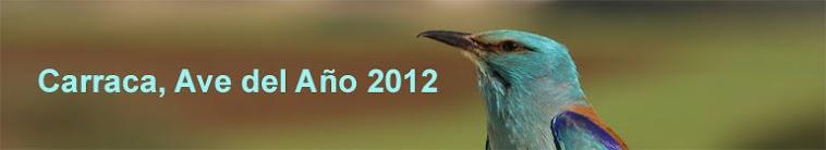 ave del año 2012