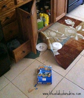 why pet food needs to be sealed up