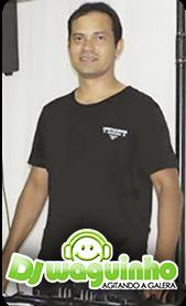 http://www.djwaguinho.com.br/search/label/PERFIL