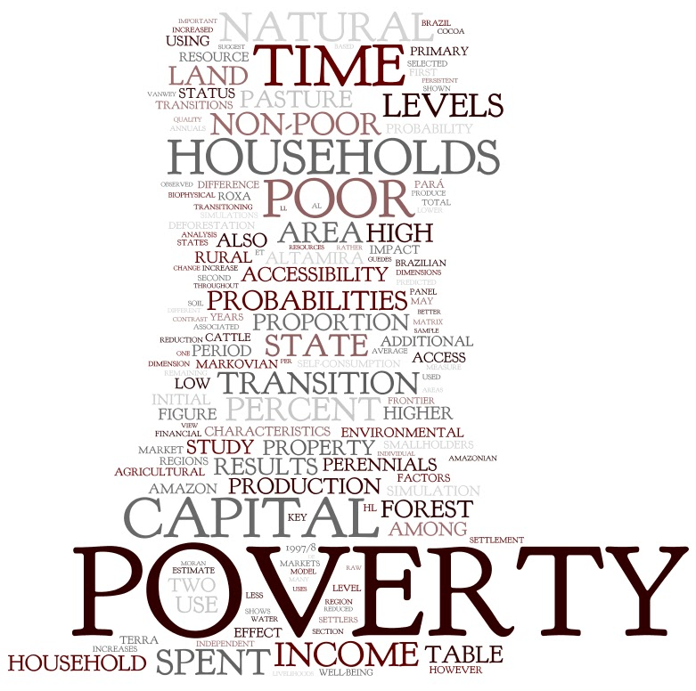 nonincome poverty essay