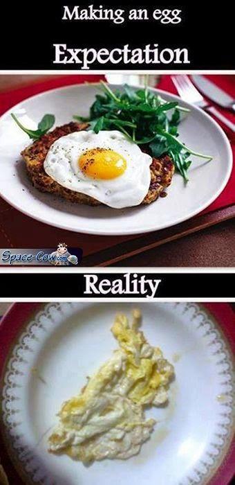 funny egg things humor