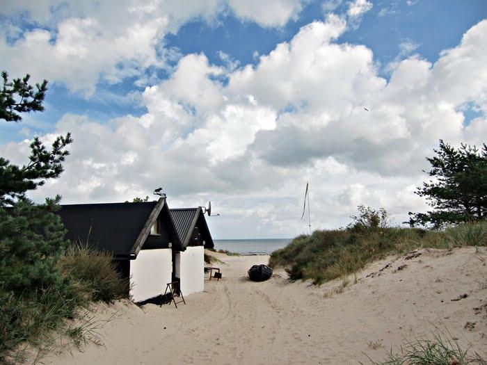 Geddfishs Foton Skåne Borrby Strand