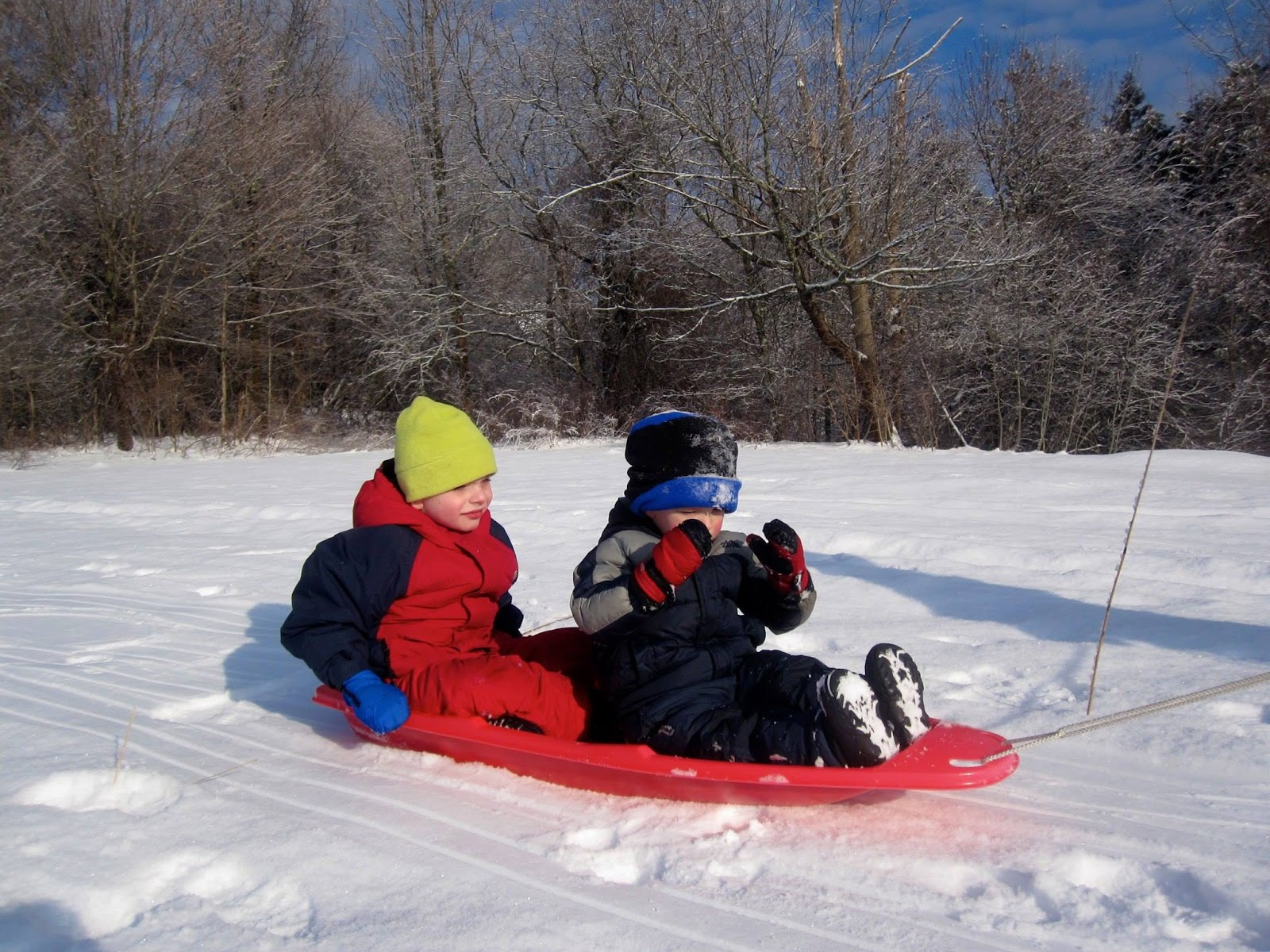 2 grandsons sledding